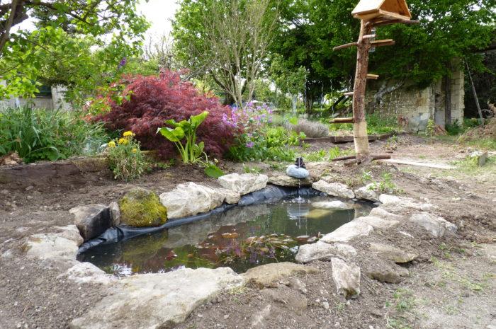 Les 5 éléments essentiels pour le bassin de votre jardin