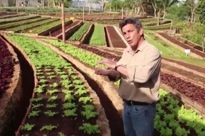 Cuba : le secret de l'île bio